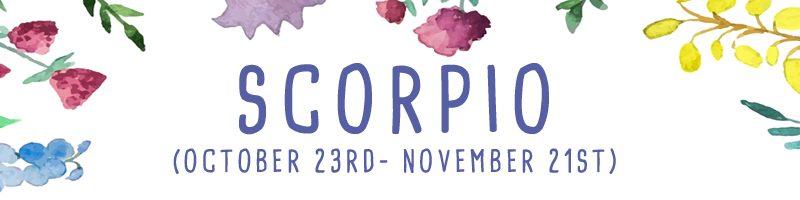 scorpio 13th