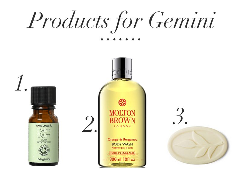 products for gemini