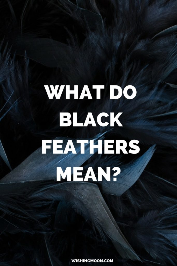 What Do Black Feathers Mean