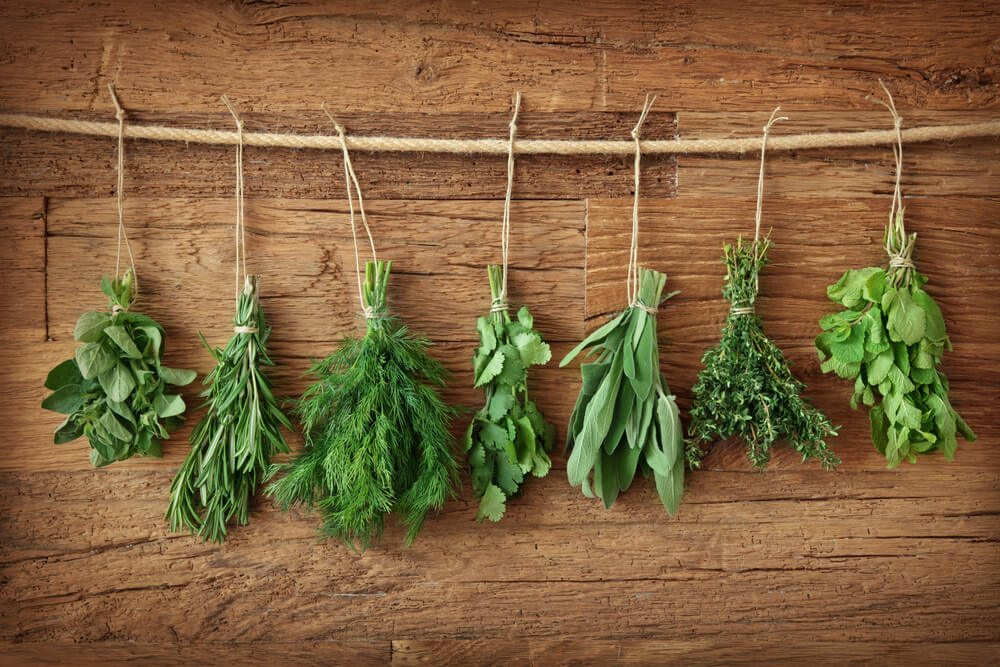 Discover the herbs that can improve your psychic abilities