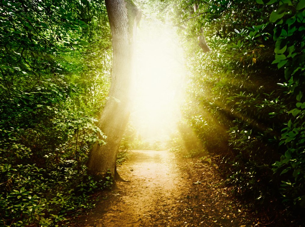 4 Life Lessons To Learn From Near Death Experiences