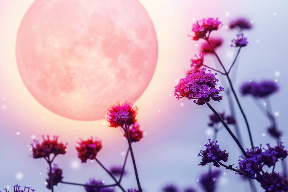 What Does Full Moon in Capricorn Mean For Us?